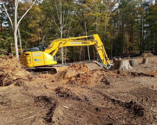 Land Clearing-Little Rock Tree Trimming and Stump Grinding Services-We Offer Tree Trimming Services, Tree Removal, Tree Pruning, Tree Cutting, Residential and Commercial Tree Trimming Services, Storm Damage, Emergency Tree Removal, Land Clearing, Tree Companies, Tree Care Service, Stump Grinding, and we're the Best Tree Trimming Company Near You Guaranteed!